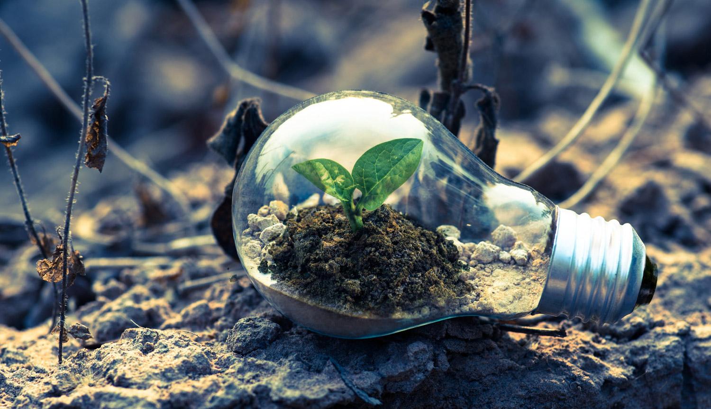 Ecosumma | Smaltimento rifiuti pericolosi e speciali